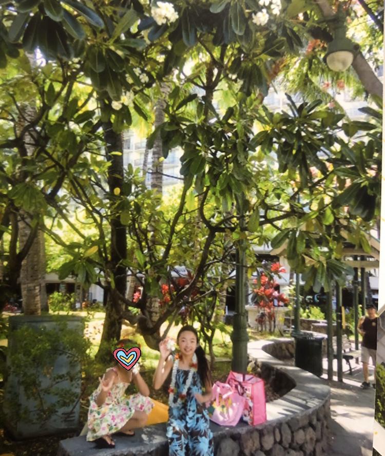 幼少期に行ったハワイの写真